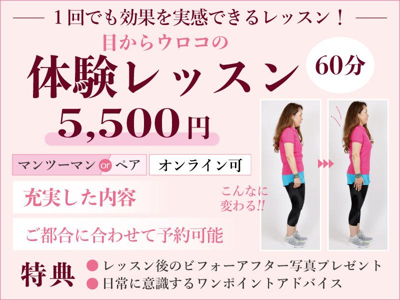体験レッスンキャンペーン 5,000円 充実した内容、ご都合に合わせて予約可能 特典あり
